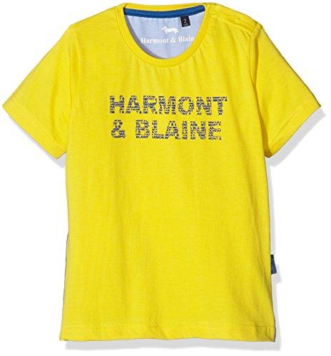 Harmont & Blaine junior T-Shirt Stampa Gommata M/M, Maglietta Bambino, Giallo Limone, 4y