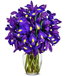 From You Flowers - Stunning Blue Iris - 15 Stems (Free Vase Included)