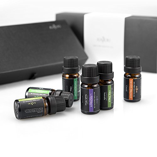 Aromatherapy Oils Anjou Top 6 Essential Oils 100% Pure & Therapeutic Grade - Basic Sampler Gift Set & Premium Kit, 6/10 ml (Lavender, Tea Tree, Eucalyptus, Lemongrass, Orange, Peppermint)