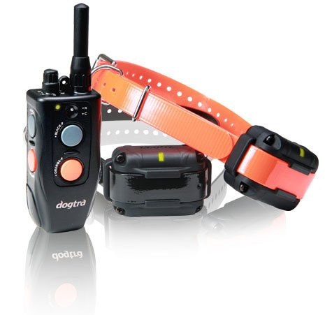 Dogtra 302M Element Training Collar - 2-Dog, Part No. D302 (Product Group: Remote Training Collars)