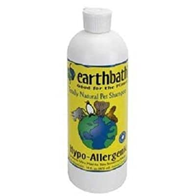 Earthbath All Natural Hypo-Allergenic and Fragrance-Free Pet Shampoo, 16-Ounce (Pack of 2)