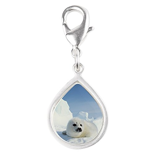 Silver Teardrop Charm Harp Seal (Wet Seal Bracelet compare prices)