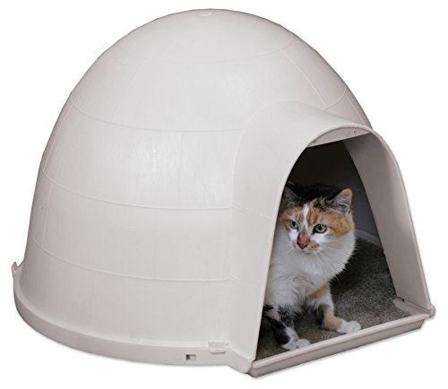 Petmate Kitty Kat Condo (Cat House Igloo compare prices)