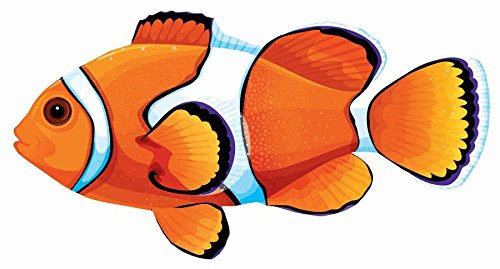 Clown Fish Cutout