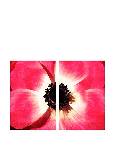 Art Addiction Pink Flower Close Up Set of 2, Multi, 36
