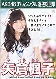 【矢倉楓子】ラブラドール・レトリバー AKB48 37thシングル選抜総選挙 劇場盤限定ポスター風生写真 AKB48チームANMB48チームM