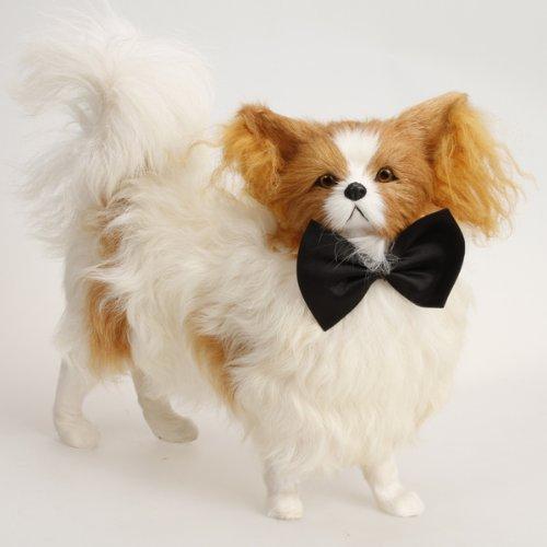 Artikelbild: Haustier Hund Katze Fliege Krawatte - schwarz