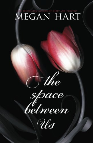 Image of The Space Between Us