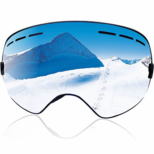 Zionor Snowmobile Snowboard Skate Ski Goggles with Detachable Lens (Silver)