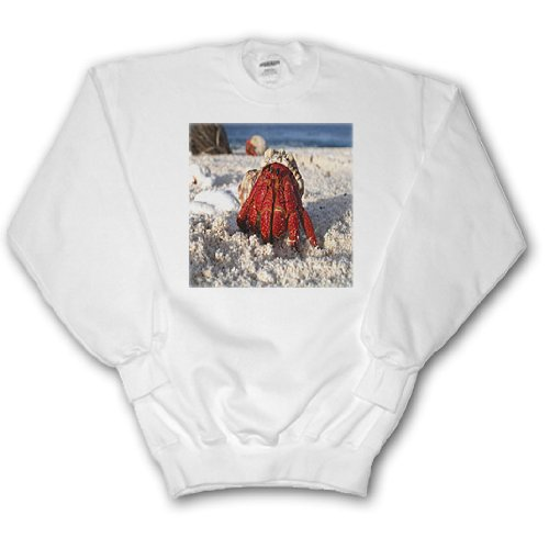 Red Hermit Crab - Youth SweatShirt Large(14-16)