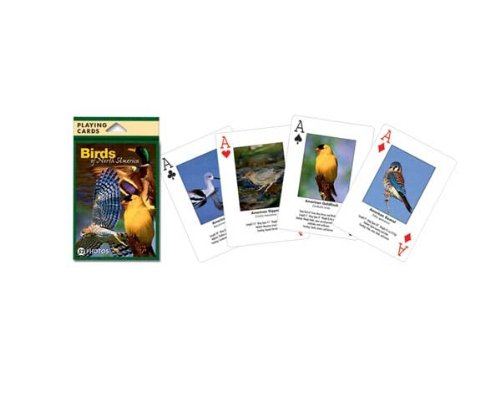 Impact Photographics IMP144PLY Playing Cards Birds North American - 1