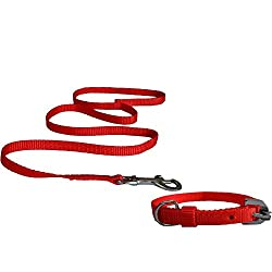Pawzone Puppy Red Leash with Collar Set