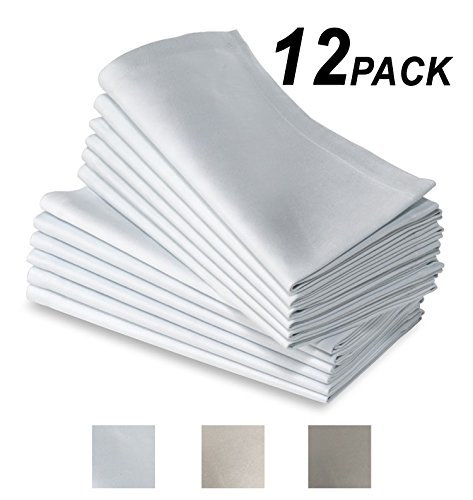 Cotton Craft 12 Pack Super Luxury Hotel & Restaurant Quality Dinner Napkins - White - 100% Supreme Ringspun Combed Cotton - Oversized 20x20 - Mitered Corners & a Generous Hem - Refined & Sophisticated (Napkin Restaurant compare prices)