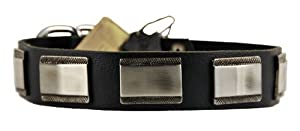 "Dean & Tyler New Design Dog Collar ""White Light"" - High Quality Leather From Netherlands with Beautiful Hardware From Italy!!! - Size Medium 51cm - 61cm Neck Size - Brown - Contact Us If You'd Like It in Black or Bigger Size!!!"