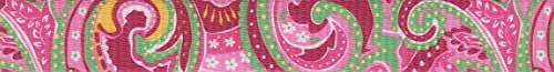 country-brook-designtm-1-inch-pink-paisley-patterned-polyester-webbing-5-yards