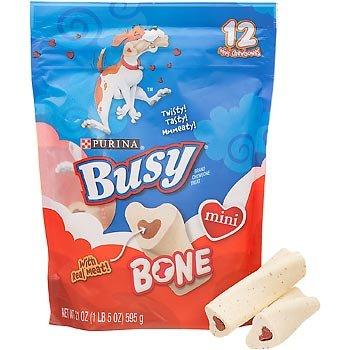 Busy Bone Dog Treat