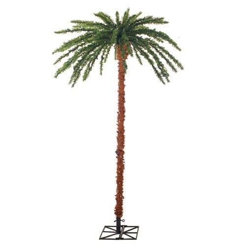 Sterling 3240-60C 6-Feet Pre-Lit Palm Tree Clear Lights