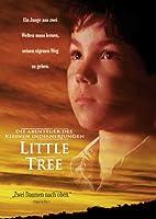 Der Indianersommer - Die Abenteuer des Indianerjungen Little Tree