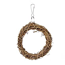 Bird Toys Swing Hanging Ring with A hook for Cockatiels And Swing Parrot 10cm