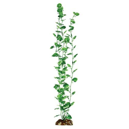 Aqueon Plant Food Review