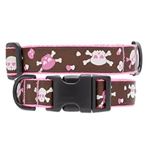 Max & Zoey Skull Dog Collar, X-Small, Brown