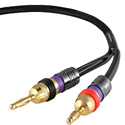 Mediabridge ULTRA Series Speaker Cable with Dual Gold Plated Banana Tips (6 Feet) - Pure Copper Cable - Black [New and Improved Version]