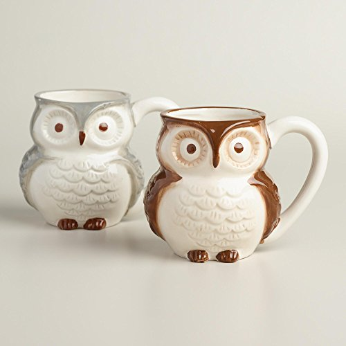 Surprise Owl Coffee Mug with Baby Owl Inside - 15 Oz (Brown)