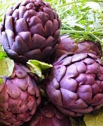 Artichoke Violet De Provence Great Heirloom Vegetable 10 Seeds