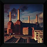 Pink Floyd Animals Framed Album Cover