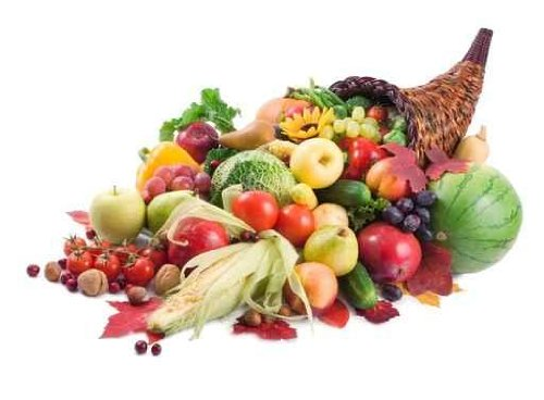 Food Wall Decals Autumn Cornucopia - 24 inches x 18 inches - Peel and Stick Removable Graphic