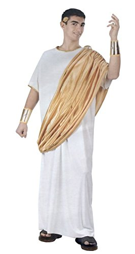 Julius Ceasar Adult Male Theatre Costumes Greek Roman One Size