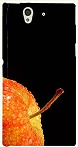 Prominent multicolor printed protective REBEL mobile back cover for Sony Xperia Z L36h D.No.N-L-11801-S36