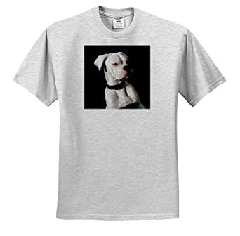 Dogs Boxer - White Boxer Uncropped Ears - T-Shirts - Youth Birch-Gray-T-Shirt Small(6-8)