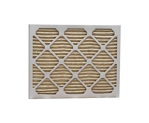 30 x 32 x 1 MERV 11 Pleated Air Filter P15S.013032