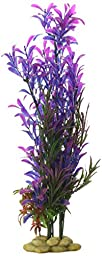Aquatic Creations Hygrophilia Aquarium Plant, 15-Inch, Blue/Purple