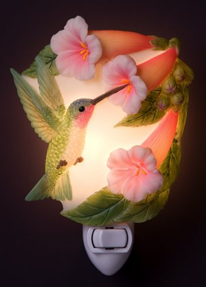Hummingbird & Trumpet Vine Night Light Ibis & Orchid Flowers of Light
