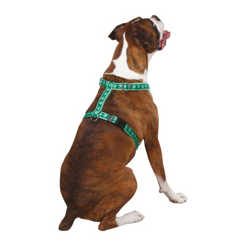 Dog Harness: Guardian Gear 8 to 14-Inch Nylon Two Tone Pawprint Dog Harness, Green