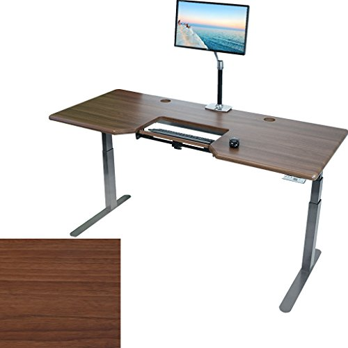 EVEREST Electric Adjustable Height Standing Desk w SteadyType