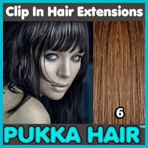 18 Inch (Medium Brown #6) Clip In Remy Human Hair Extensions - 8 Piece Set - Full Head - Clips Attached - 100g Weight - Get the Celebrity Lush Look!!