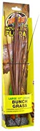 Zoo Med Naturalistic Flora Bunch Grass, 12-Inch