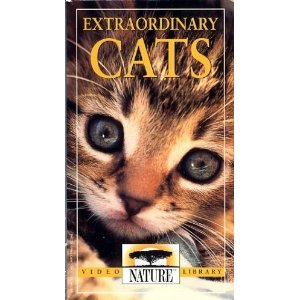 Amazon.com: PBS Nature Library: Extraordinary Cats [VHS]: Nature