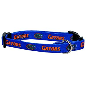 Hunter MFG Florida Gators Dog Collar, Medium