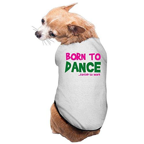 Cute Dog Sweaters Born To Dance Dog Jacketscomfortable (Dance Costume Designer Online)