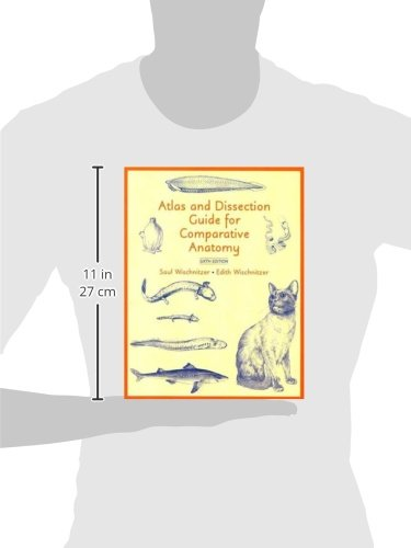 Vertebrates comparative anatomy function evolution