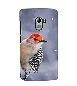 Printvisa Premium Back Cover Black And Red Cuckoobara Bird Design For Lenovo K4 Note
