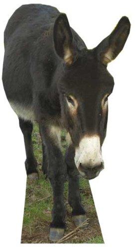 Donkey Cardboard Cutout