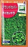 【種子】ダイカンドラ 20ml(約1m2分)