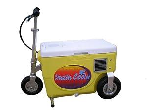 Cruzin Cooler 50-Series 300-Watt Electric Scooter (Yellow)