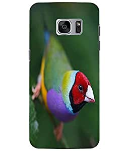 Case Cover Bird Printed Colorful Soft Back Cover For Samsung Galaxy S7 EDGE