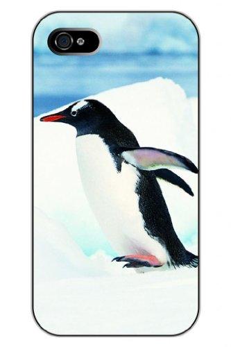 Sprawl Clear Cartoon Animal Print Read To Fly Penguin Hard Plastic Snap On Iphone 4S Case For Boys